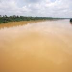 El río amarillo