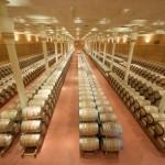 Finca Valpiedra en La Rioja: vinos y fotos
