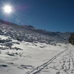 El camino en la nieve