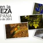La naturaleza en España, tiene su día